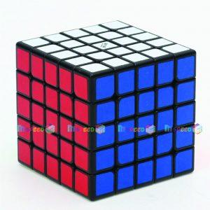 QIYI WUSHUANG 5×5 (1)